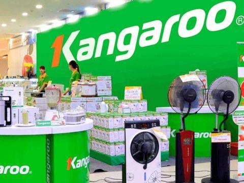 Giảm doanh thu, Kangaroo vẫn có thêm 2,3 tỷ đồng lợi nhuận mỗi tháng